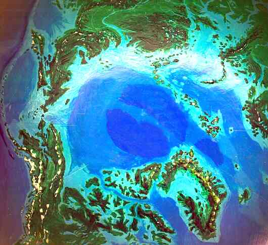 Orbital photo of Dubia, a possible future Earth. The ice-free Arctic Sea and its forested coast.