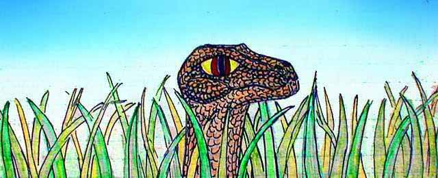 giant rattler head rising from the grass