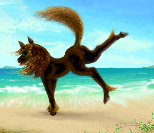 Dream: my anima Silky, in the form of a black mare, dances on a beach.